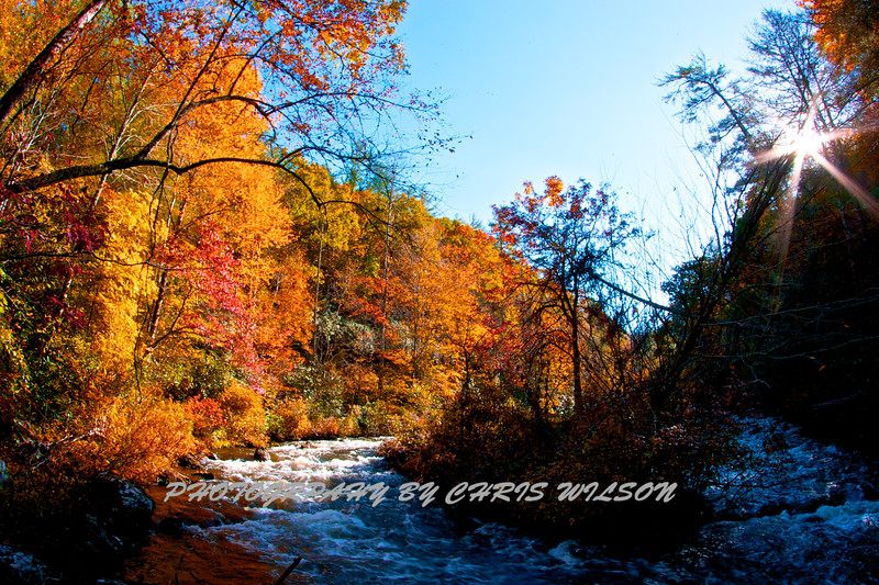 Western NC Fall colors_10-15-12_0052