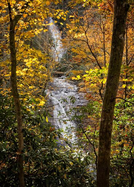"""Helton Creek Falls"""