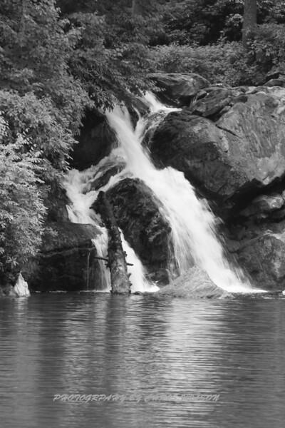 N C  Waterfalls-C Wilson Photo_0891_06-06-20