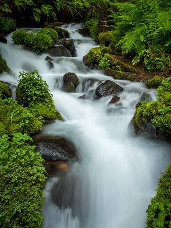 Wahkeena Creek 2