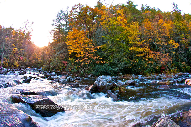 Western NC Fall colors_10-15-12_0066
