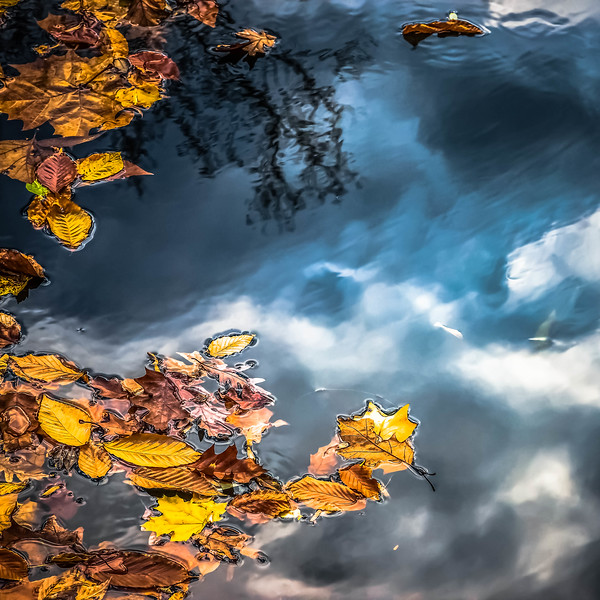 Downstream Float