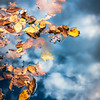 Floating on Sky