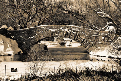 Central Park - Winter  The symbol '©' on the photos DOES NOT PRINT.