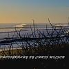 Ocean Ave_18-03-05_011