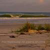 Central Gulf Coast Fla_09-01-08_0518