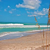 Central Gulf Coast Fla_08-23-07_0513