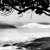 Puerto Rico_02-13-10_0449