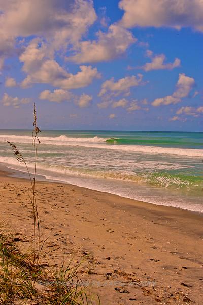 Central Gulf Coast Fla_08-23-07_0511