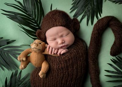 View More: https://carribethphotography.pass.us/noah-newborn-gallery