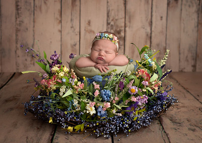 View More: https://carribethphotography.pass.us/claire-newborn