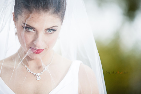 styled bridal photo shoot with Stephanie Dietz