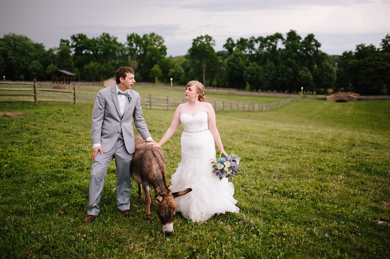 Ranch wedding photography with a mule