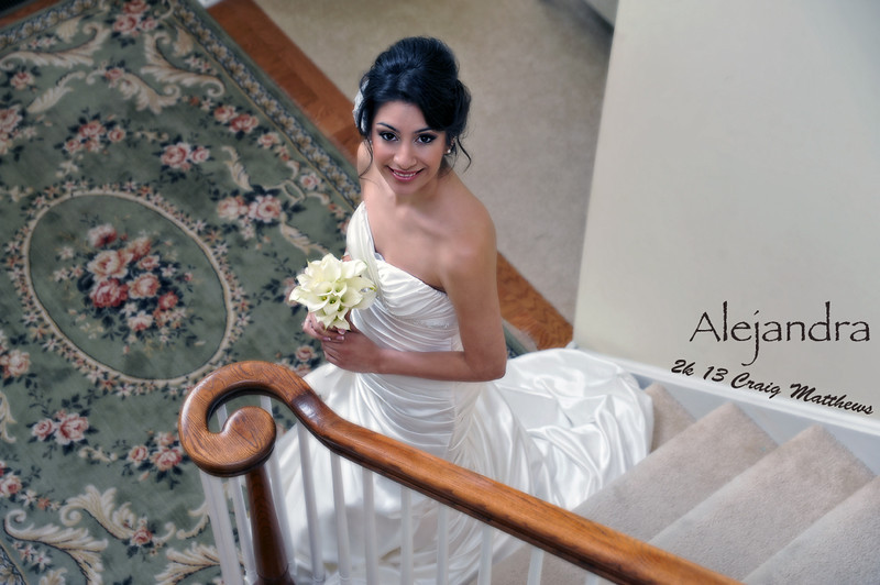 Alejandra's Wedding