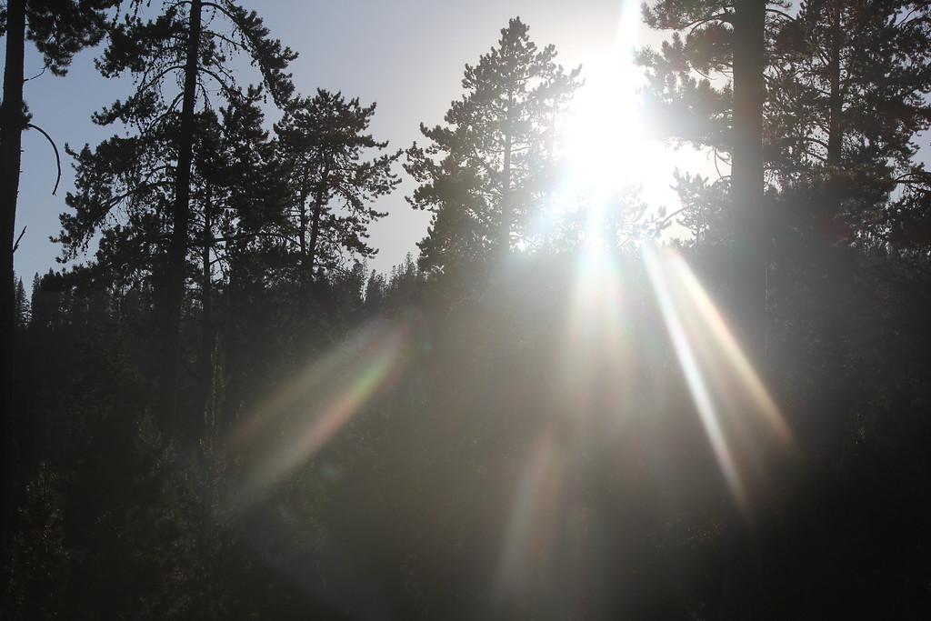 WEEK 49 - REFLECTIONS - SCOTT KRAUSE 1