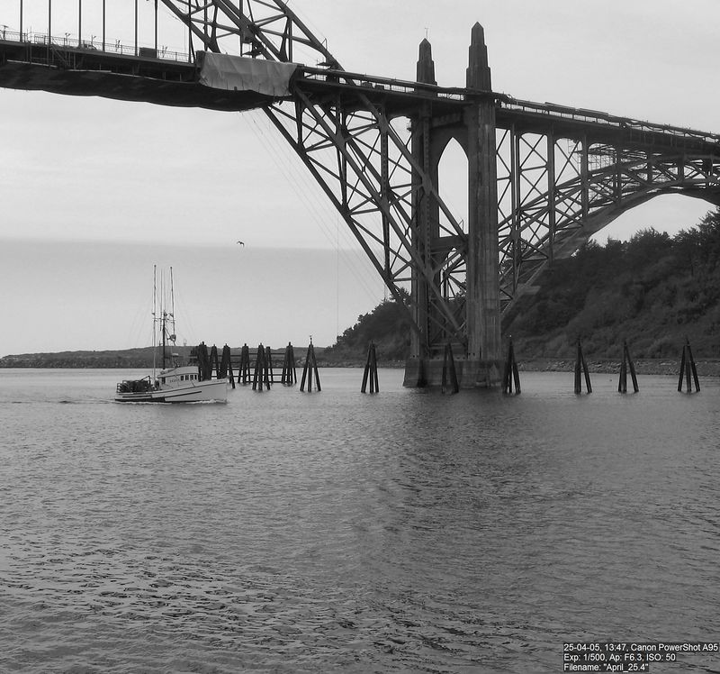 A commercial fishing vessel comes in under the Yaquina Bay bridge (which is currently being painted).