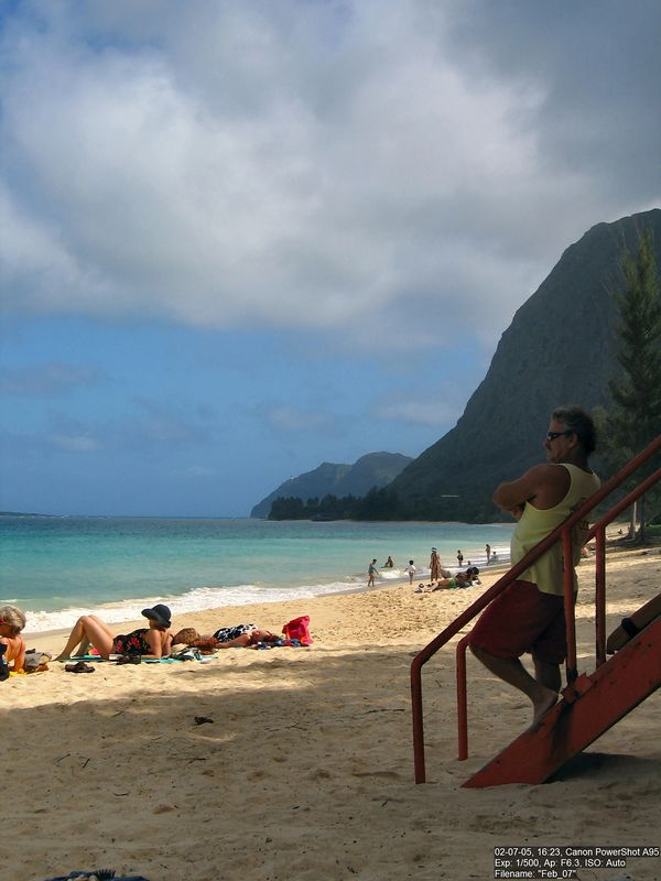 I want to be a lifeguard in paradise (also known as Hawaii).