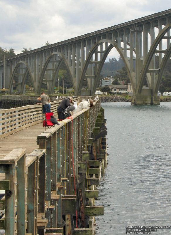 Fishing & crabbing off the public pier, South Beach, Yaquina Bay.