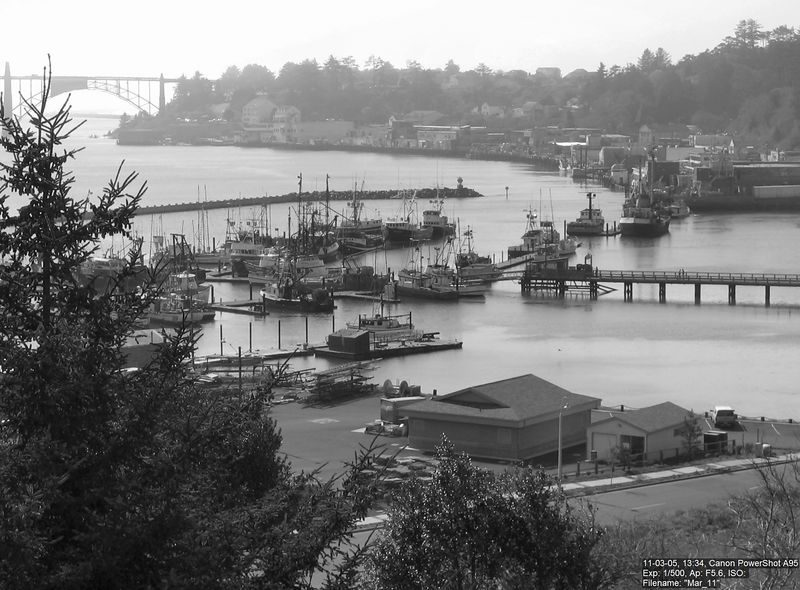 Another in the series of B&W pics of the Newport Bayfront.
