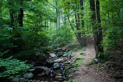 Peaks of Otter, Blue Ridge Mountains, Virginia USA