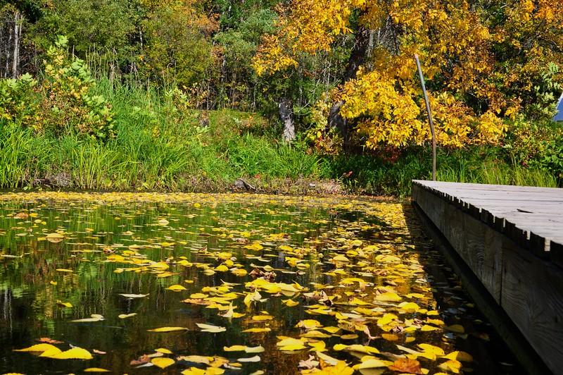 Upper Peninsula, Michigan USA