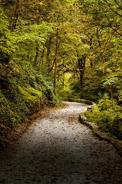 Carriage Trail Path