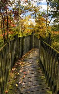 Grandview Fall