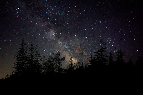 Dolly Sods Night Sky