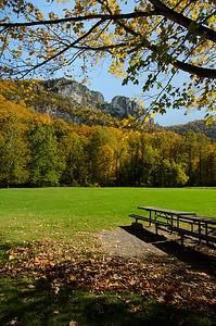 Seneca View