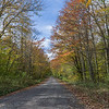 Country Road Fall