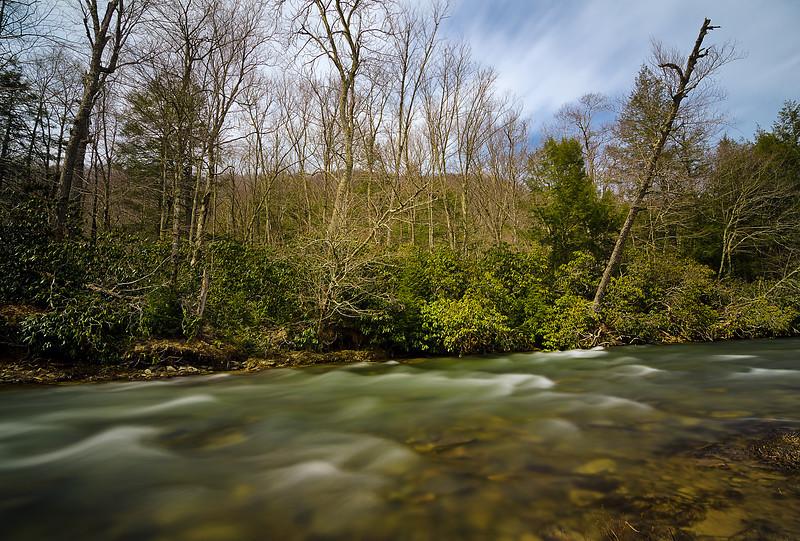 West Fork Stream
