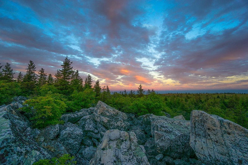 Dolly Sods Crown Of Color