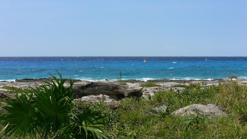 Cozumel Coast