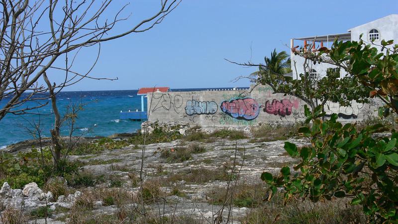 Mexican Grafitti