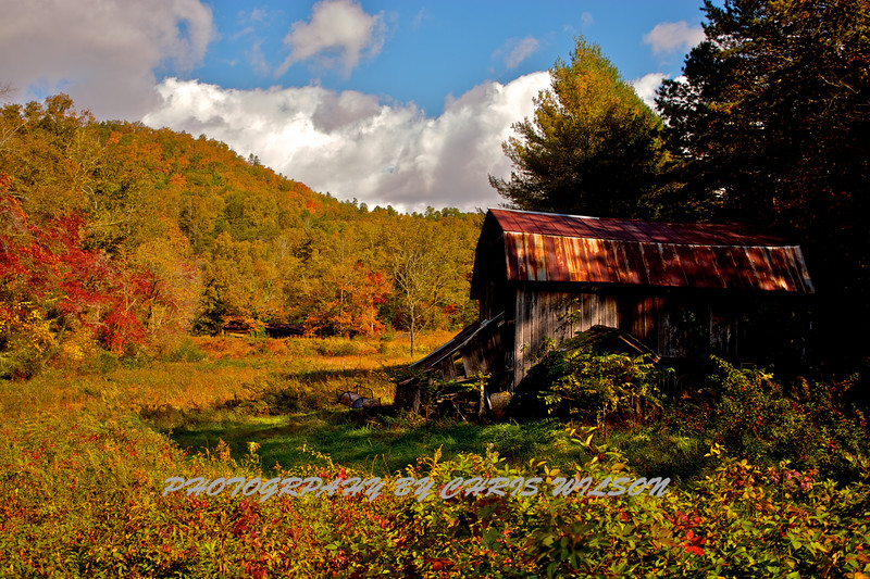 Western NC Fall colors_10-14-12_0044
