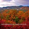 Western NC Fall colors_10-14-12_0043