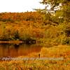 Western NC Fall colors_10-12-12_0008
