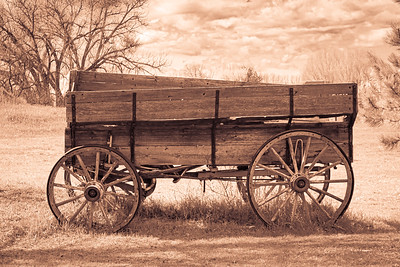 Pioneer SUV
