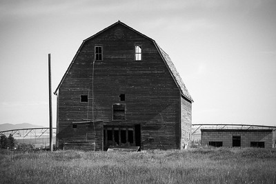 Tears of a Withered Barn