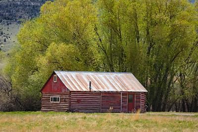 Summertime Cabin