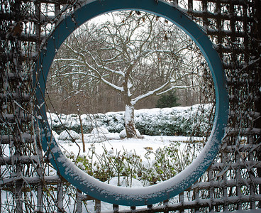 Winter Lookout @ Inniswood