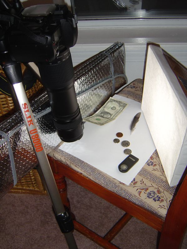 This is the setup for the extreme close-up work.  300mm lens mounted on the camera with a 60mm lens reversed and stacked on the 300mm.  The 60mm macro lens mounted normally on the camera makes a 1X magnification.  This setup makes a 5X magnification.