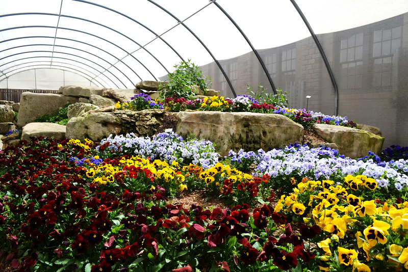 Beau Botanical Gardens Greenhouse In Wichita Kansas