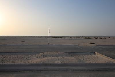 IMG_7111_Arabian Oryx_003