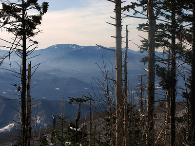 The Black Mountains from Roan Mountain