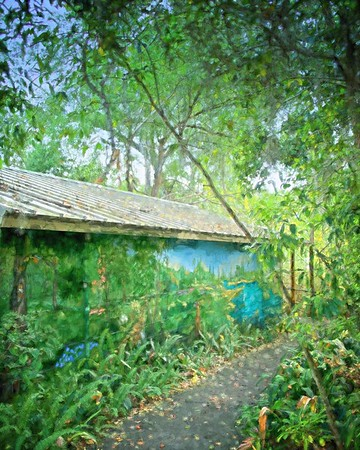 WPP2263 Mead Botanical  Gardens
