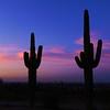 Sunset over Phoenix from South Mt, jan 14, 2016 DSCN9630