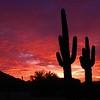 Sunset, from South Mt, Phoenix, AZ, jan 16, 2016 DSCN9665
