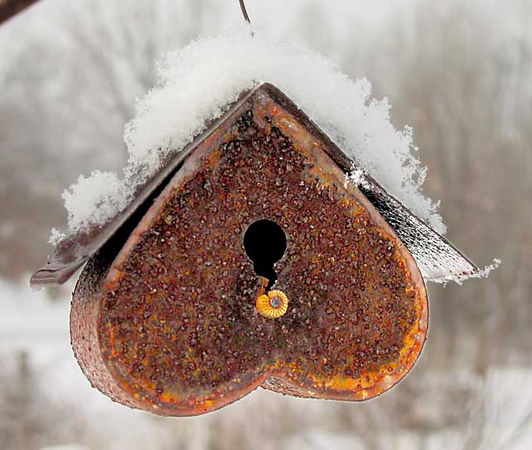 Rusty tin birdhouse after snowstorm.<br /> UPDATE: this birdhouse has now officially and completely rusted away.<br /> I found it on the ground and when I picked it up, it crumbled into small rusty flakes.<br /> I let the flakes fall from my hands into the soil, for good or ill...<br /> to change the chemistry in a way that would not have happened<br />  had it not been for my casual intervention.