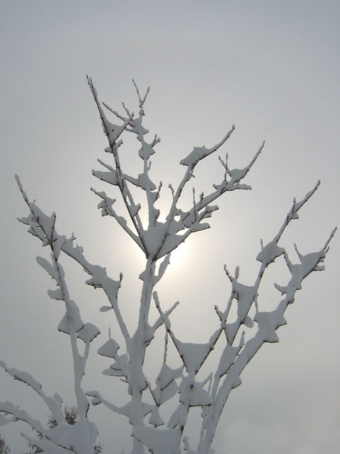 The sun peeking out after a big snowstorm.